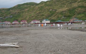 Волонтёрская акция по уборке района лежбища сивучей и береговой полосы