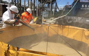 Обработка сорбентом загрязнённого участка грунта