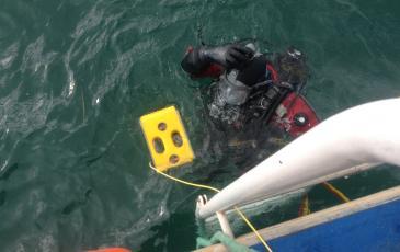 Спуск телеуправляемого подводного аппарата на поверхность акватории