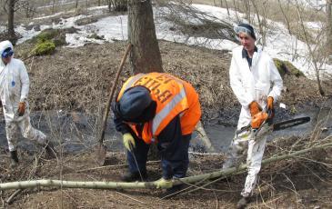 Расчистка русла ручья от кустарника,загрязненного нефтепродуктами
