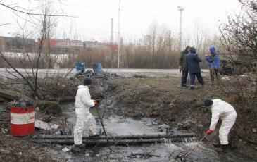 Очистка береговой линии ручья от нефтепродуктов