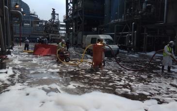 Работа спасателей ПАСФ Свердловского центра «ЭКОСПАС»