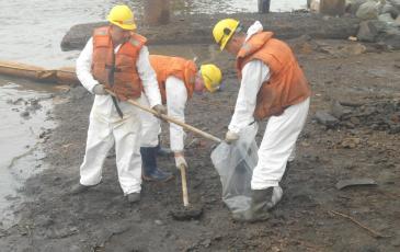 Сбор загрязненного нефтесодержащего грунта