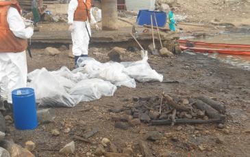 Зачистка береговой линии от нефтесодержащего грунта