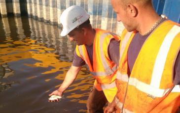 Личный состав ПАСФ отпускает рыбу в чистую воду