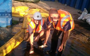 Вылов рыбы попавшей в загрязненную воду