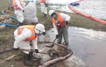 Очистка берега реки от нефтепродуктов